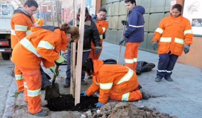 El Municipio B plantará más de 500 nuevos árboles en todo el territorio.