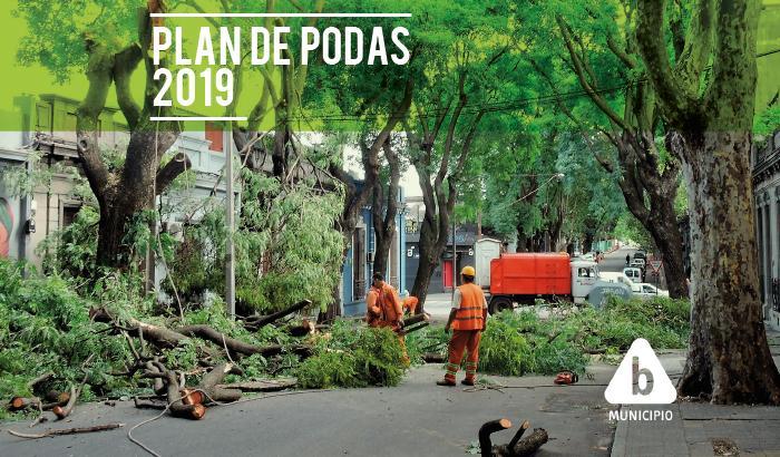 podas PLAN DE PODAS 2019 Municipio B